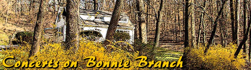 Bonnie Branch in the winter